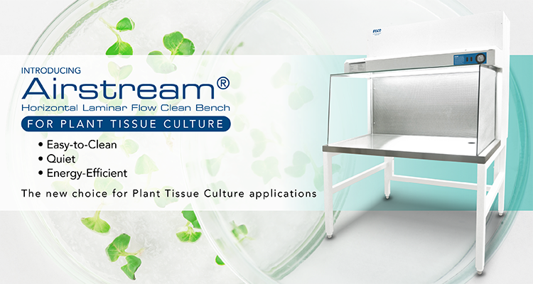 Airstream®  Horizontal Laminar Flow Clean Bench